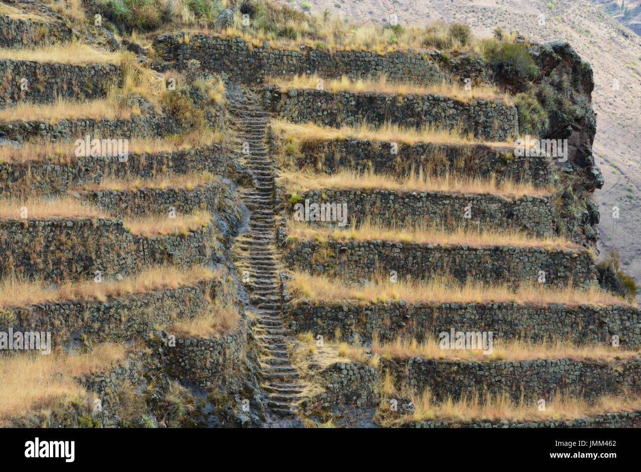 Overgrown agricultural terraces along the hiking trail at the ancient Inca ruins at Pisac - Stock Image