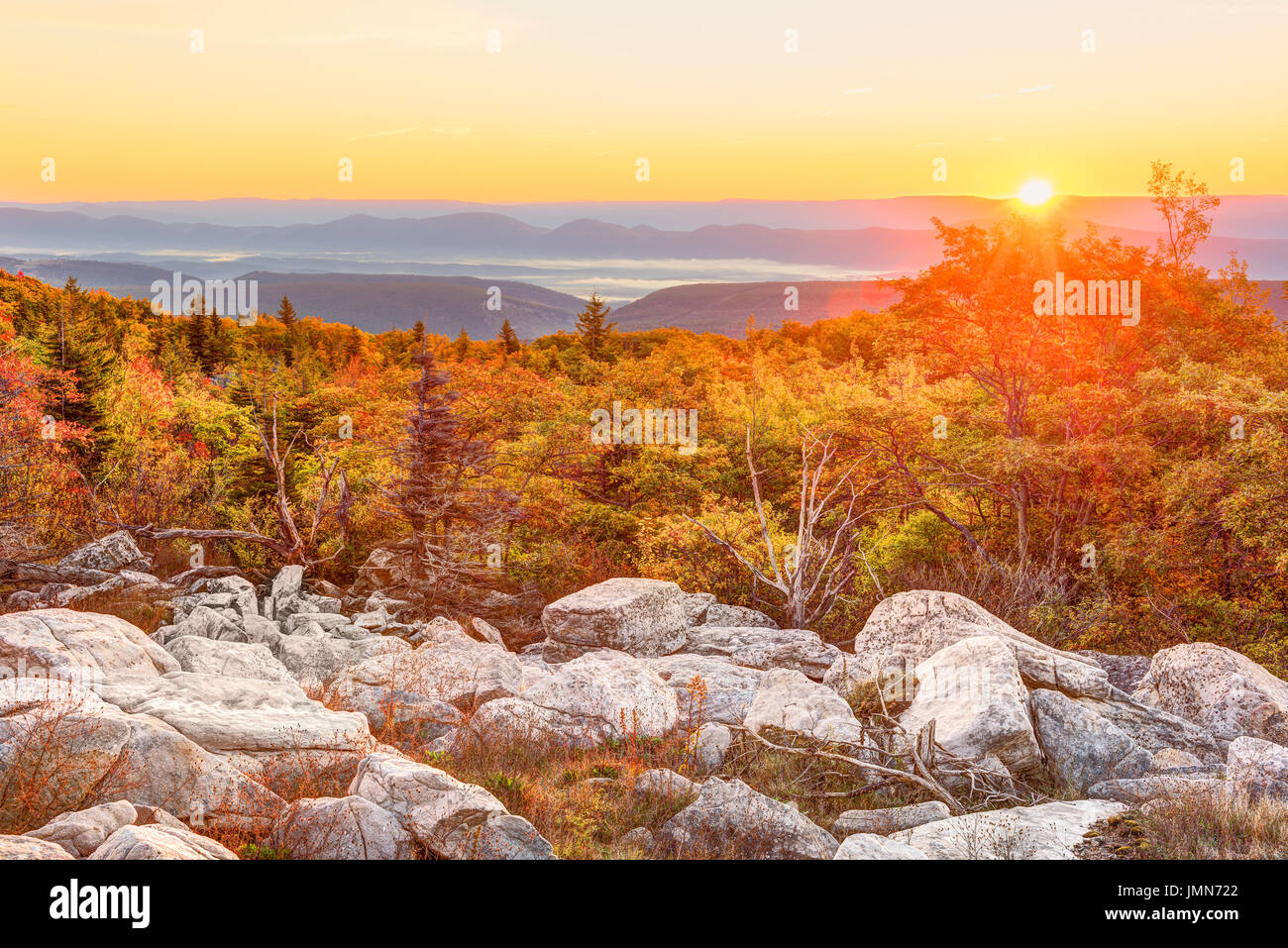 Bear rocks sunrise during autumn with rocky landscape in Dolly Sods, West Virginia - Stock Image