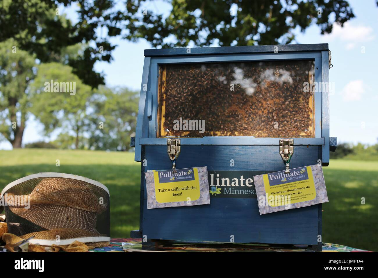 A selfie station, with bees, at the pollinator party in Minneapolis, Minnesota, USA. - Stock Image