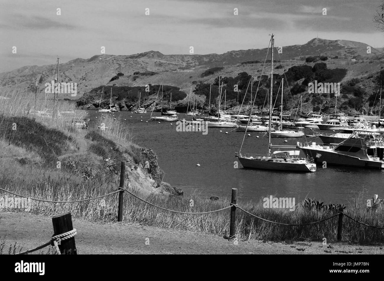 Boats in harbor, Santa Catalina Island, California - Stock Image