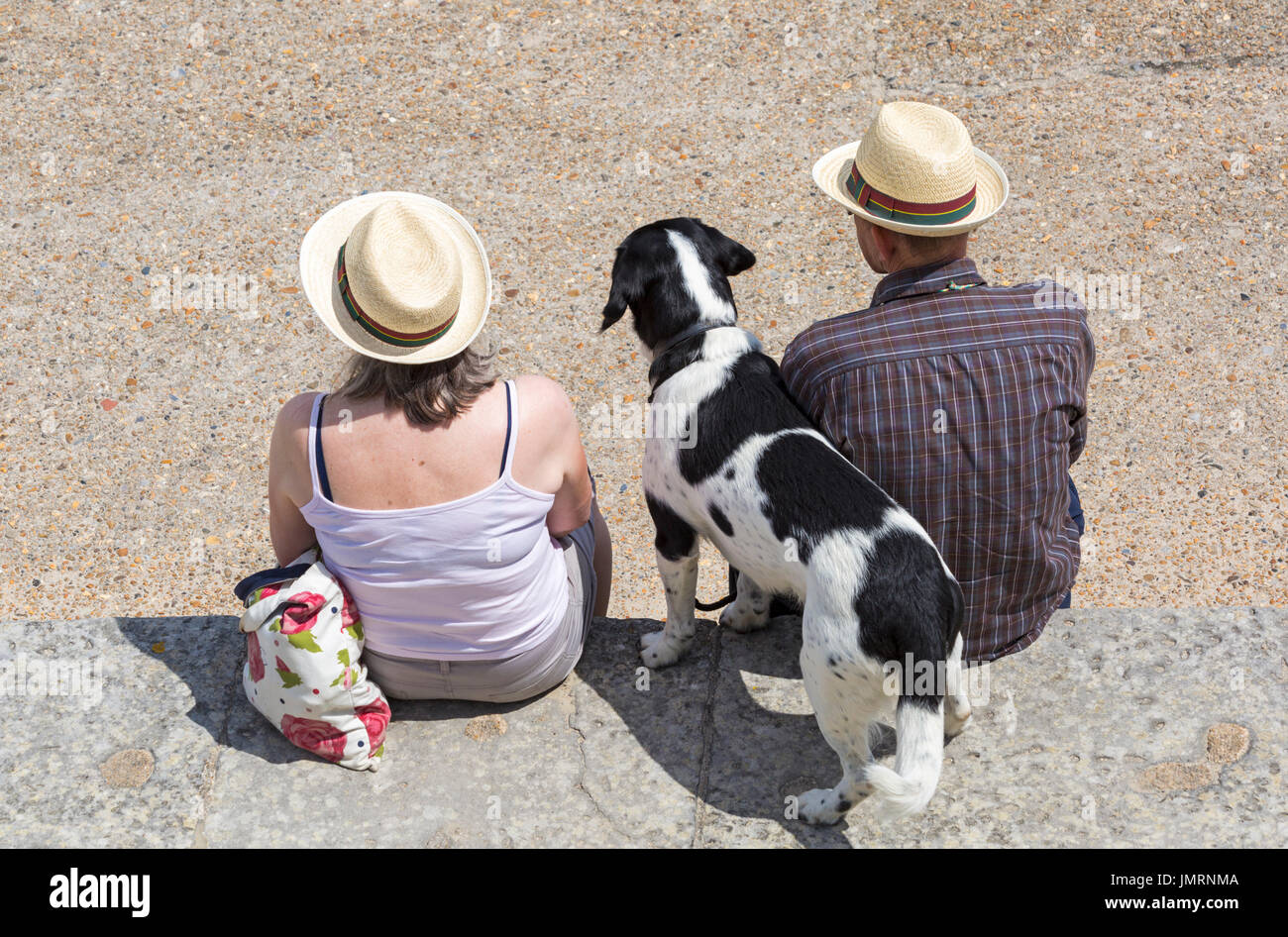 Looking down over couple sitting on harbour wall with dog at Lyme Regis, Dorset in July Stock Photo