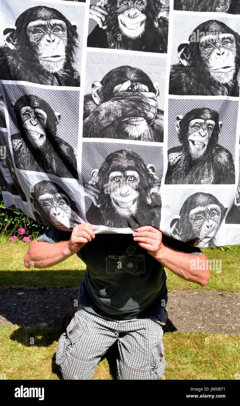 Monkey business - Stock Image