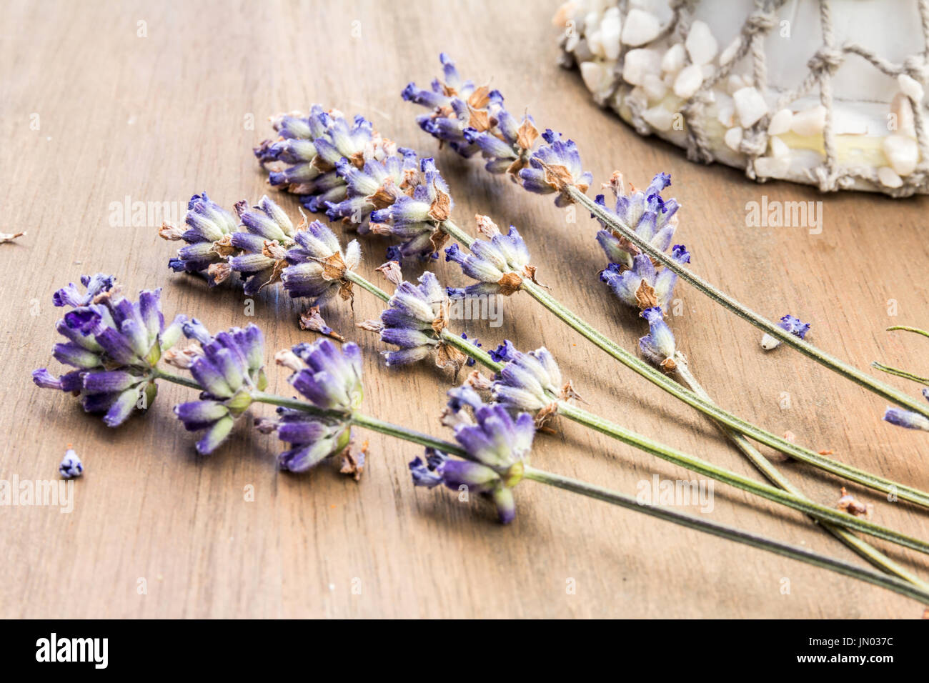 Display of Dried Lavender with a Seashell ornament in the background on a light oak Wooden Table Stock Photo