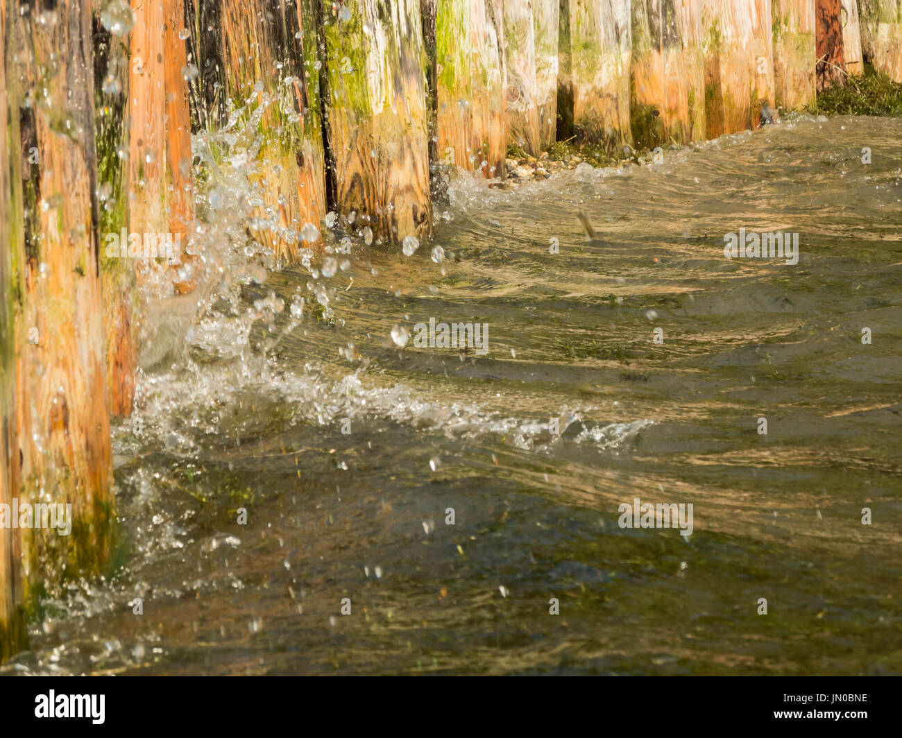 Close-up water to a wooden shore attachment at the Lake Caldaro. - Stock Image