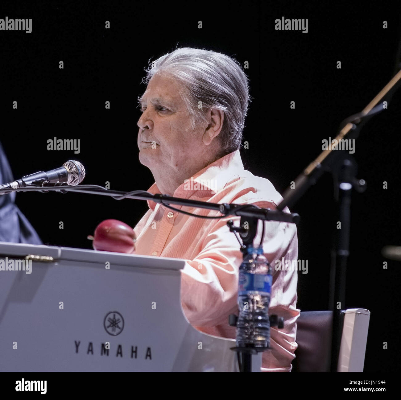 Liverpool, Merseyside, UK. 28th July, 2017. BRIAN WILSON performing The Beach Boy's classic album Pet Sounds Live at Liverpool Exhibition Centre Credit: Andy Von Pip/ZUMA Wire/Alamy Live News - Stock Image