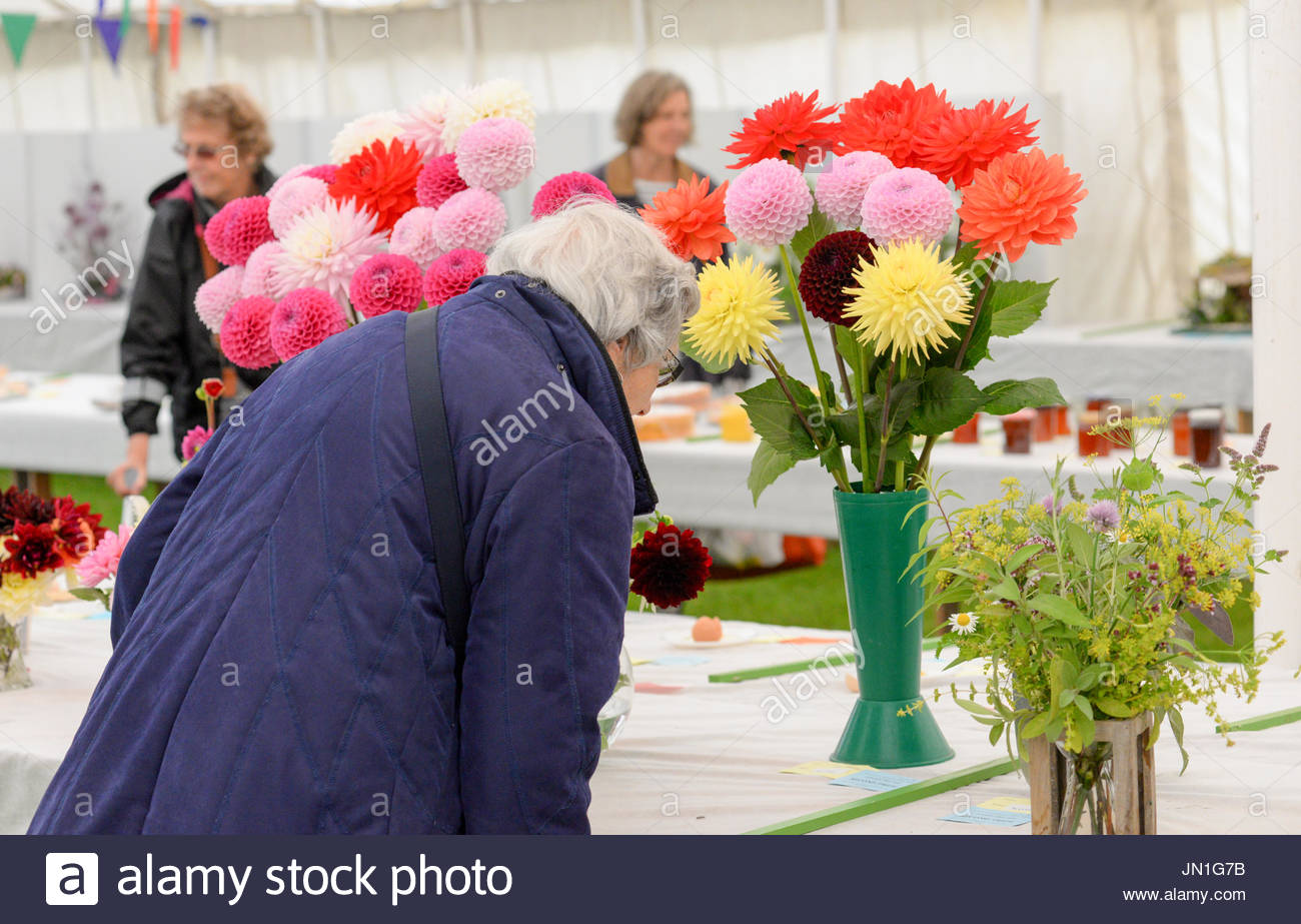 Damerham, Fordingbridge, Hampshire, UK, 29th July 2017, a wet weather washout day for local event. After a dull start, outbreaks of rain grew heavier through the afternoon causing the annual village fair and horticultural show to close early with many arena events cancelled. Local support held up well before the deluge arrived. Credit: Paul Biggins/Alamy Live News - Stock Image