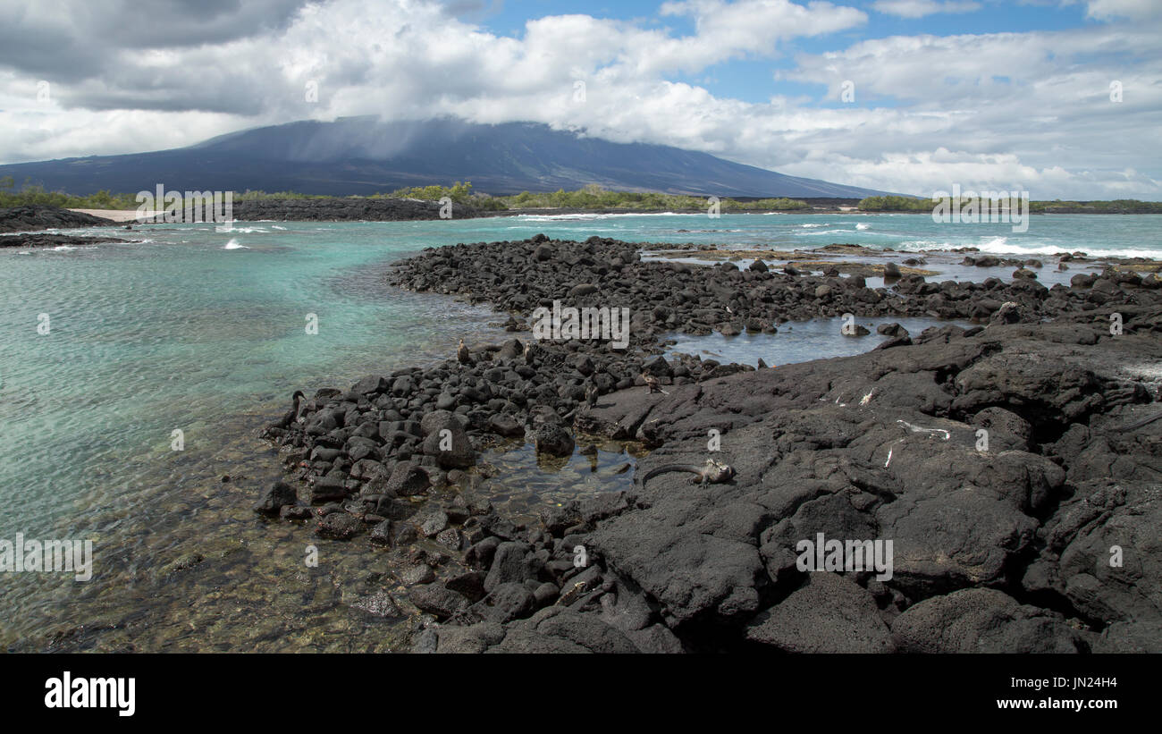 Galapagos Islands Landscape - Paisaje Islas Galápagos Stock Photo