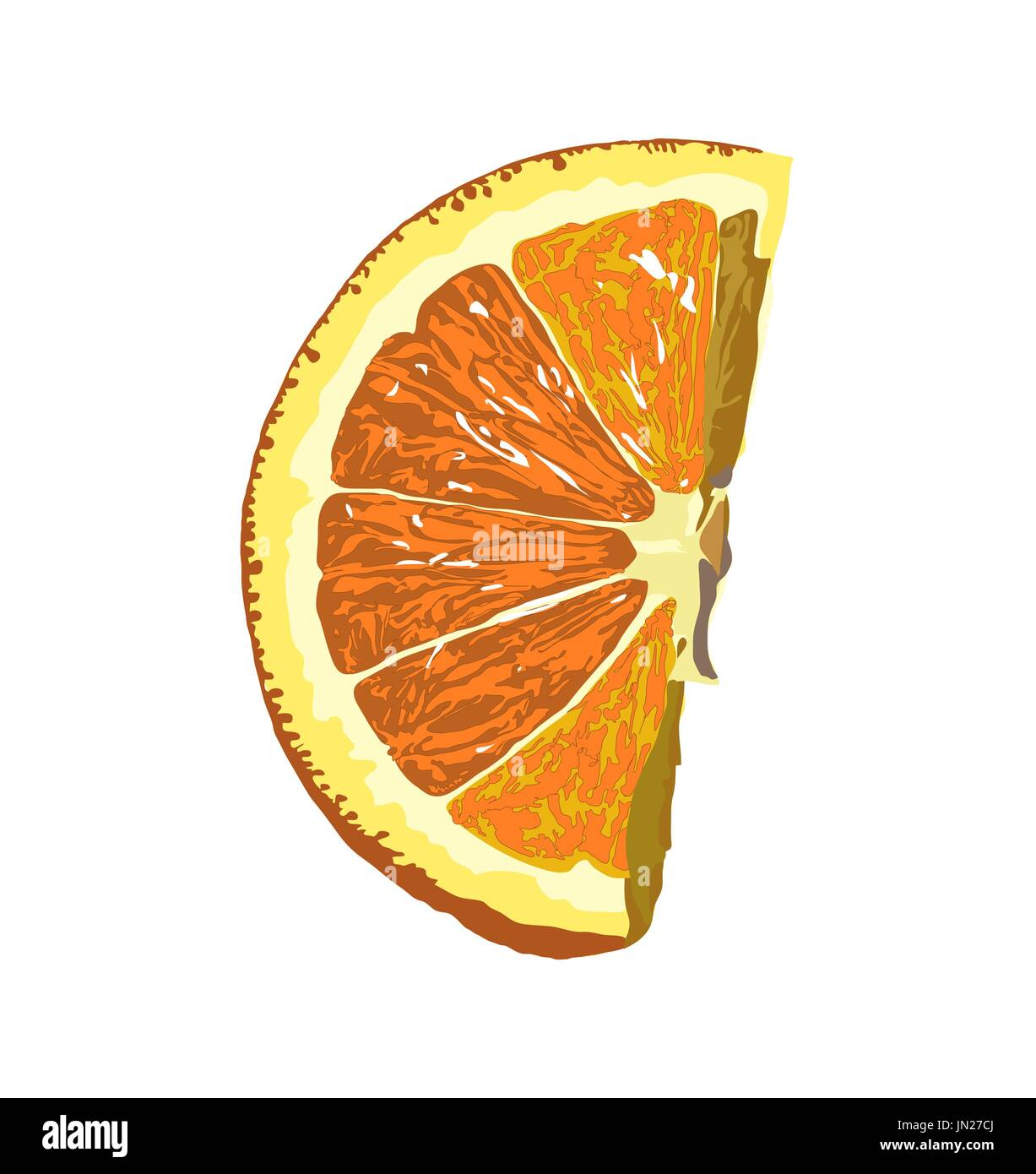 Share of natural orange isolated on white background. - Stock Vector