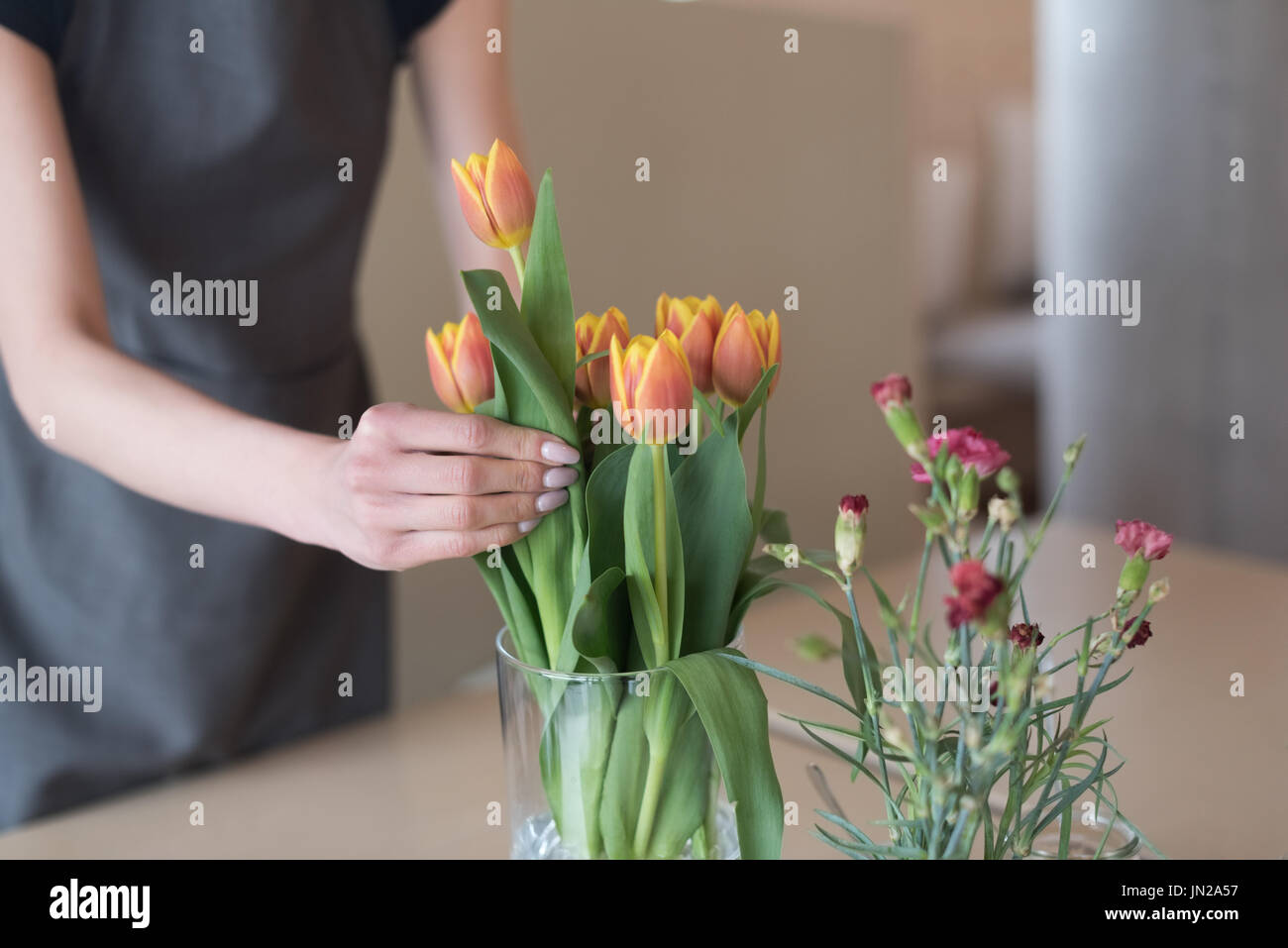 Mid section of woman arranging tulips in vase on table at cafe - Stock Image