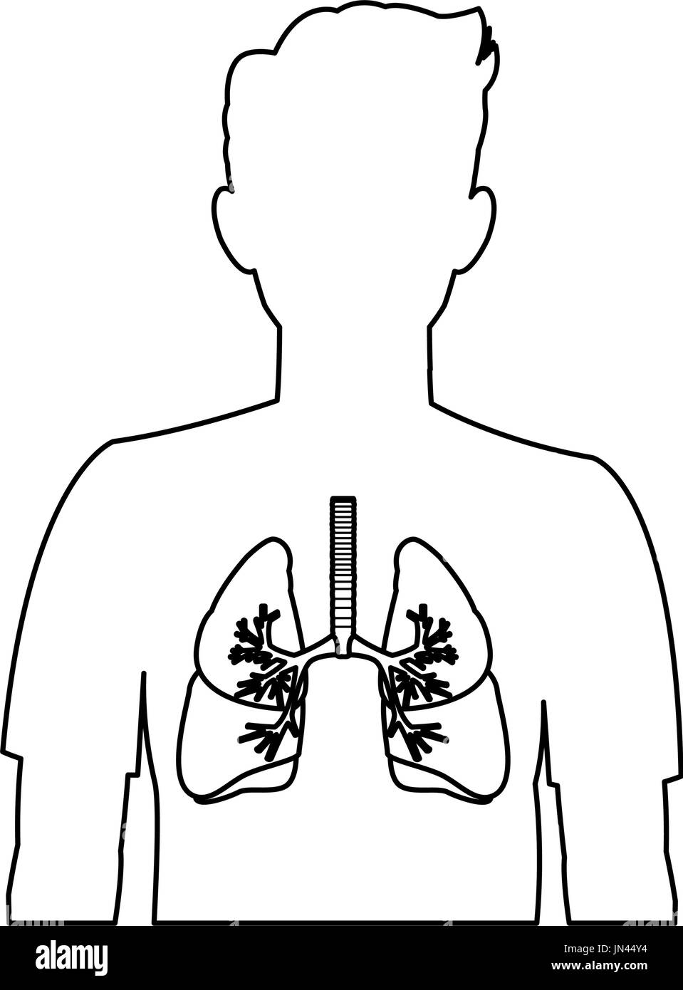 respiratory system black and white stock photos & images - alamy