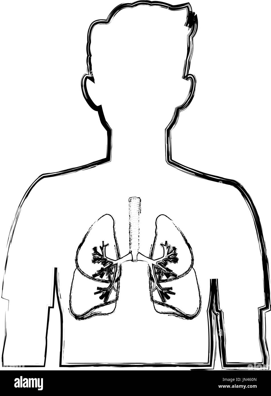 human silhouette with respiratory system - Stock Image