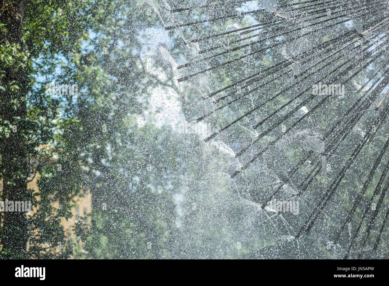 Dandelion water installation at the park. - Stock Image