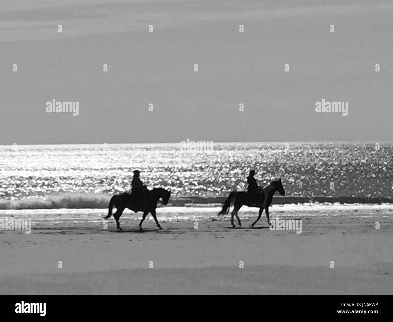 cavalry Stock Photo