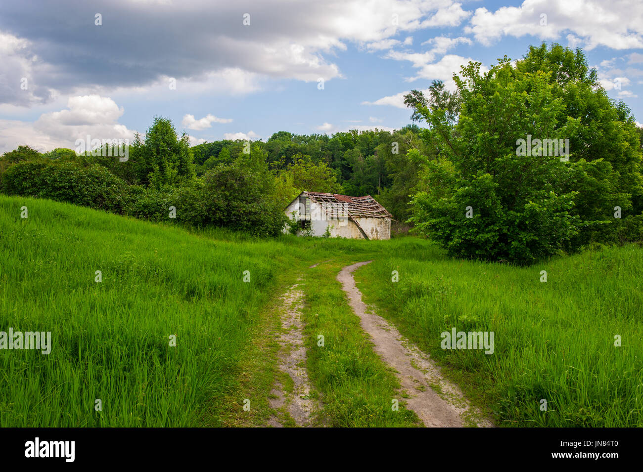 Dirt trail to the old house in the forest - Stock Image