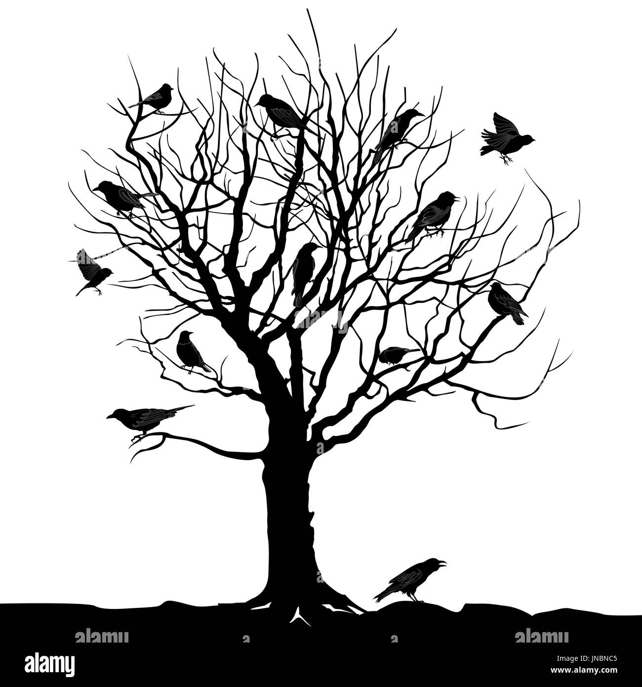 Winter tree with birds on twig vector silhouette illustration - Stock Image