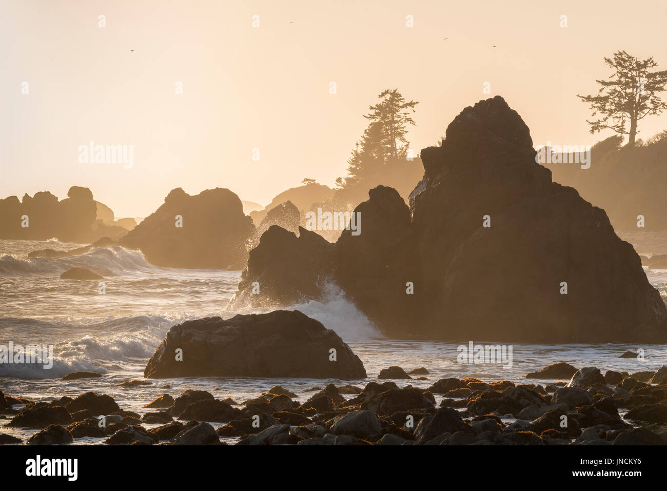 Surf and rocks at Pebble Beach, Crescent City, California. - Stock Image