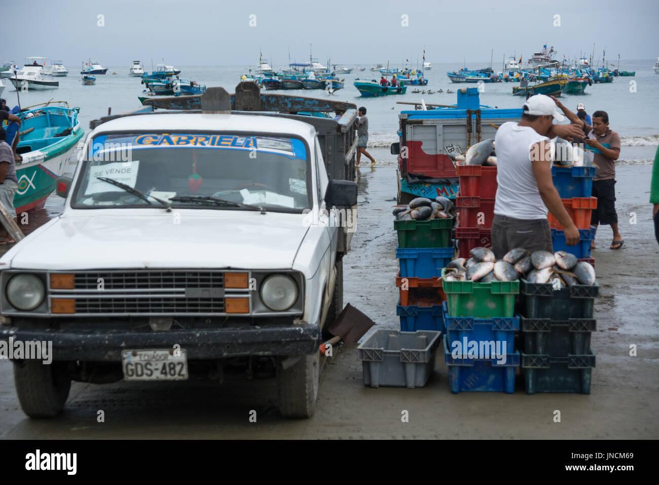 Manabi Stock Photos & Manabi Stock Images - Alamy