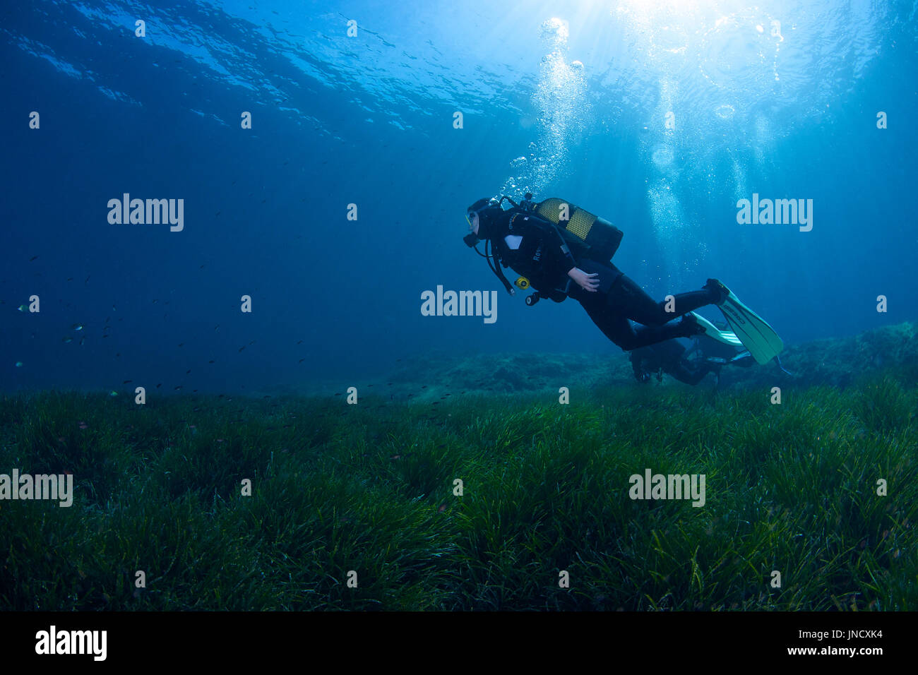 Scuba diving at Ses Salines Natural Park at Formentera (Balearic Islands, Spain) - Stock Image