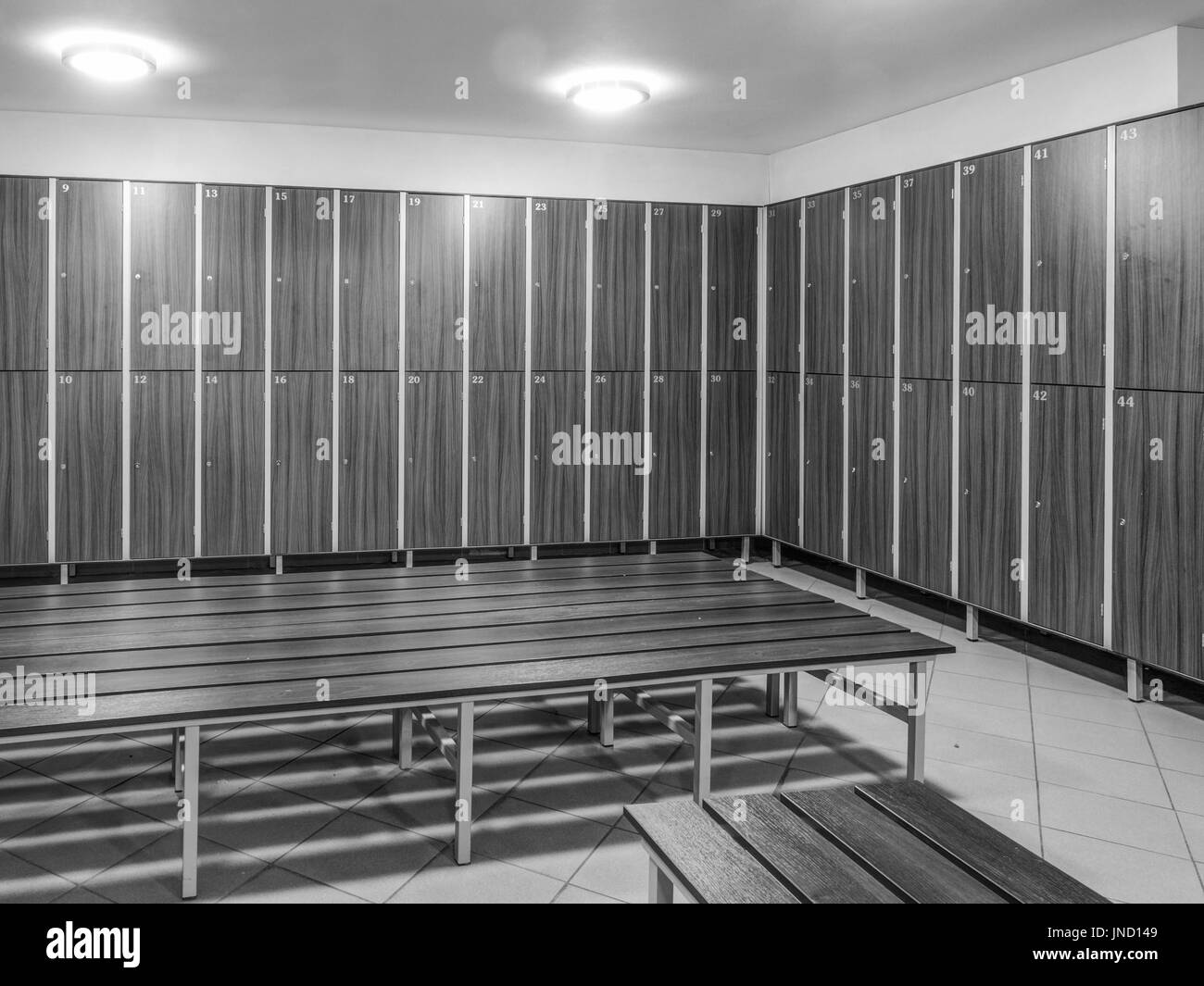 The row of wooden cabinets and a wooden bench in a fitness club dressing room - Stock Image