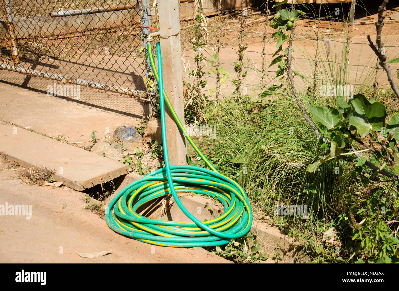 Faucet water tap connect with rubber hose or hosepipe at outdoor in garden - Stock Image