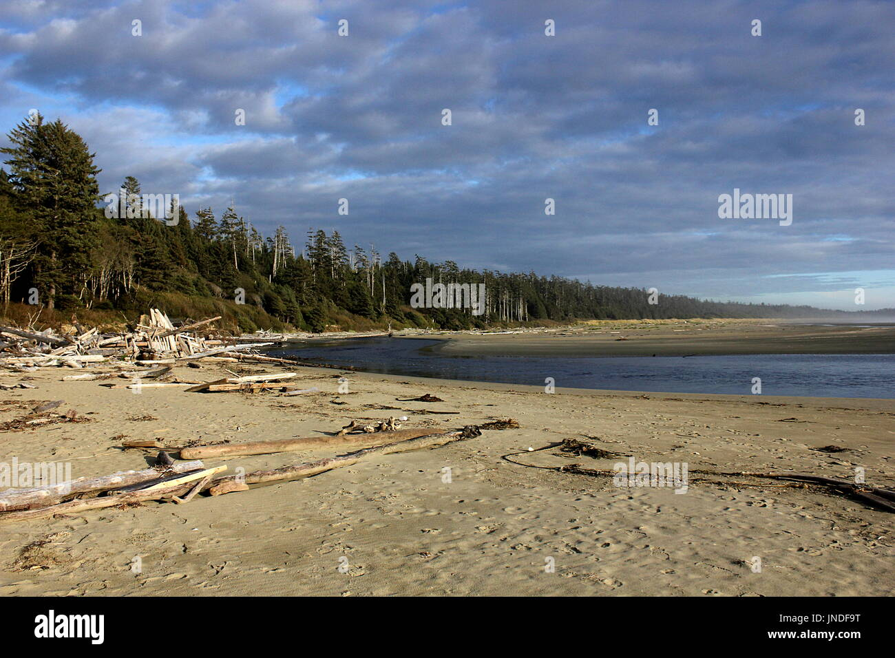 Desolate Long Beach near Tofino in the Pacific Rim National Park Reserve on Vancouver Island, British Columbia - Stock Image