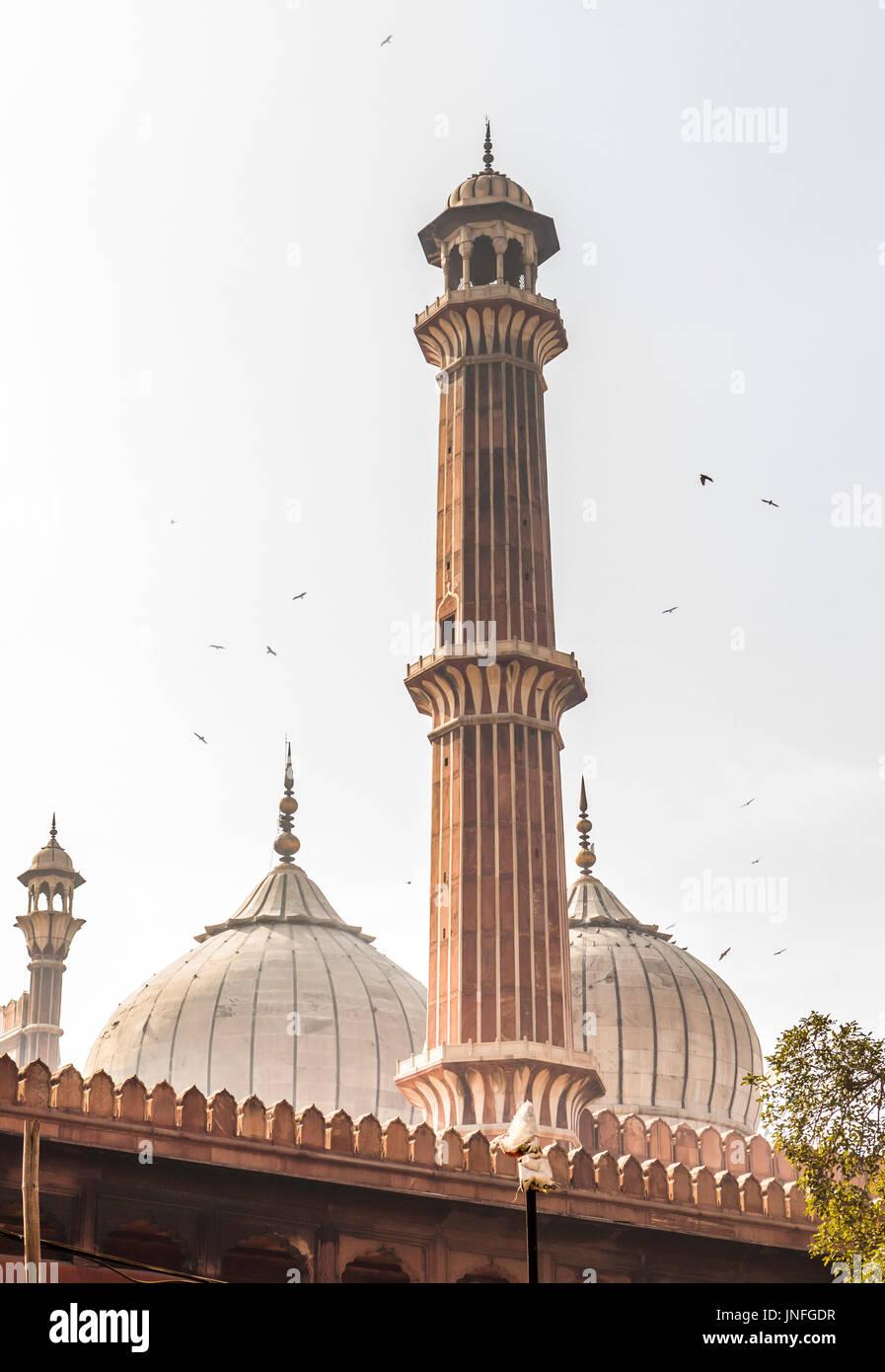 Jama Masjid in Delhi, India - Stock Image