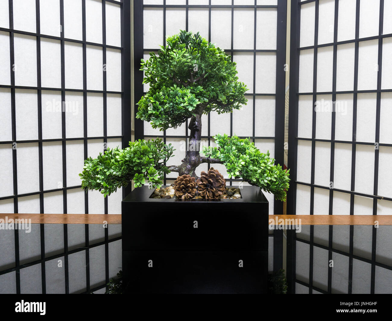 Bonsai Tree Interior Home Decoration On A Black Glass And Wooden Stock Photo Alamy