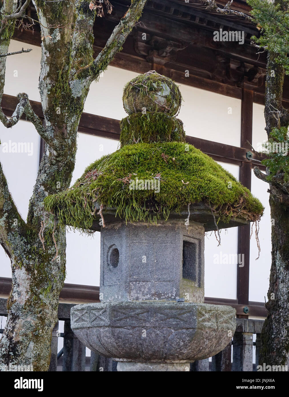 Ancient stone and wooden lanterns covered in moss in Nara, Japan. - Stock Image