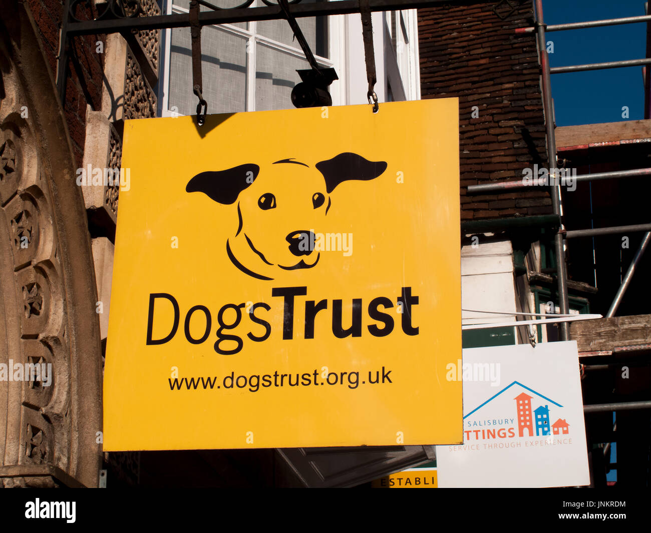 Dog Trust animal charity sign over retail unit, formerly known as the National Canine Defence League, animal welfare charity and humane society - Stock Image