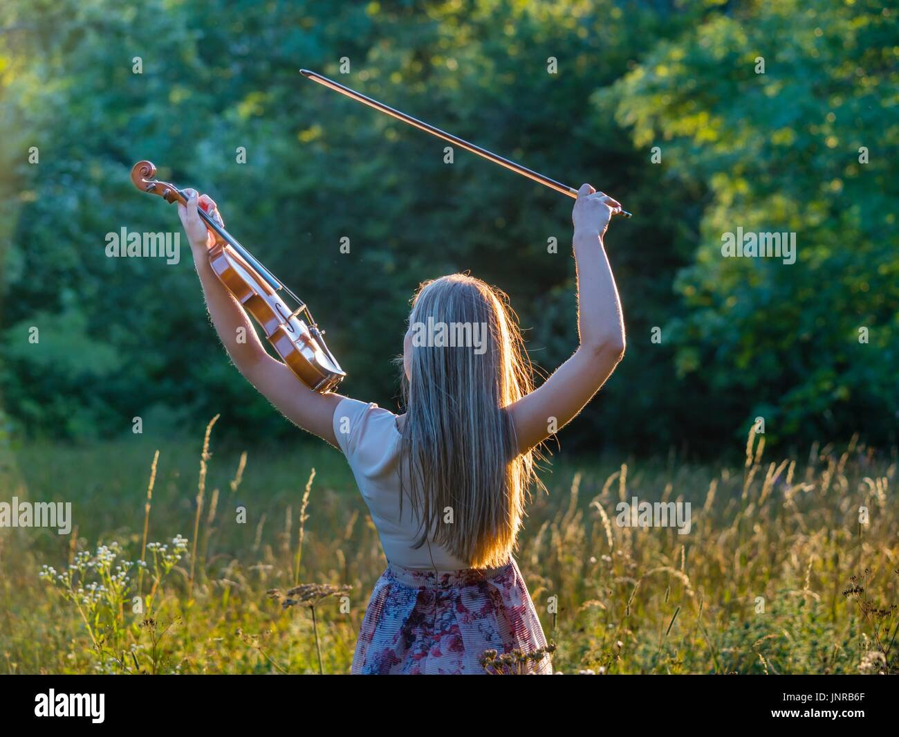 Young female violinist in nature frantic fast furious violin practice practicing sunset warm light hair highlights - Stock Image