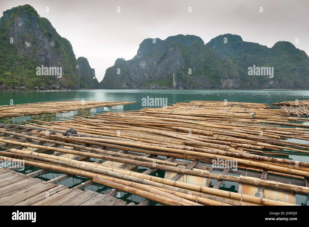Halong Bay, Vietnam, pearl farm infrastructure Stock Photo