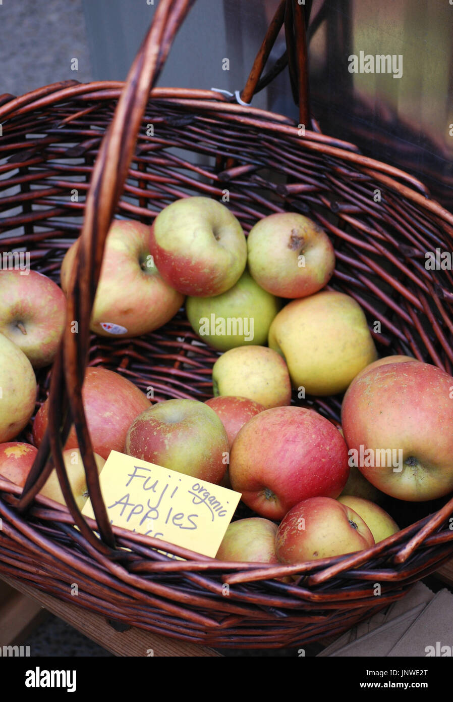 Basket of Fresh Picked Organic Fuji Apples - Stock Image