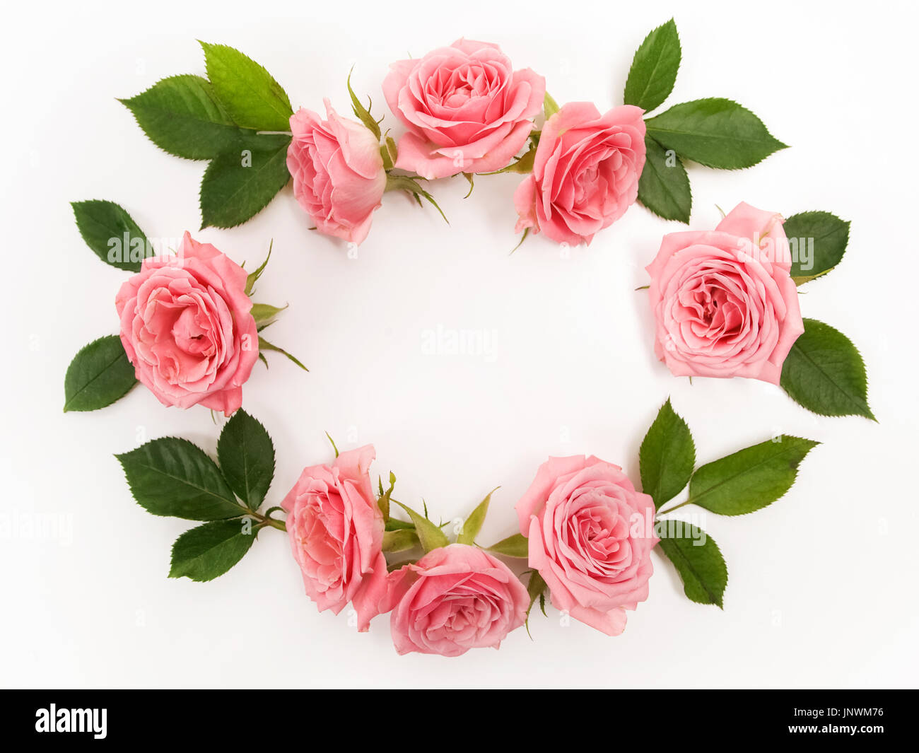 Round frame made of pink roses, green leaves, branches, floral pattern on white background. Flat lay, top view. - Stock Image