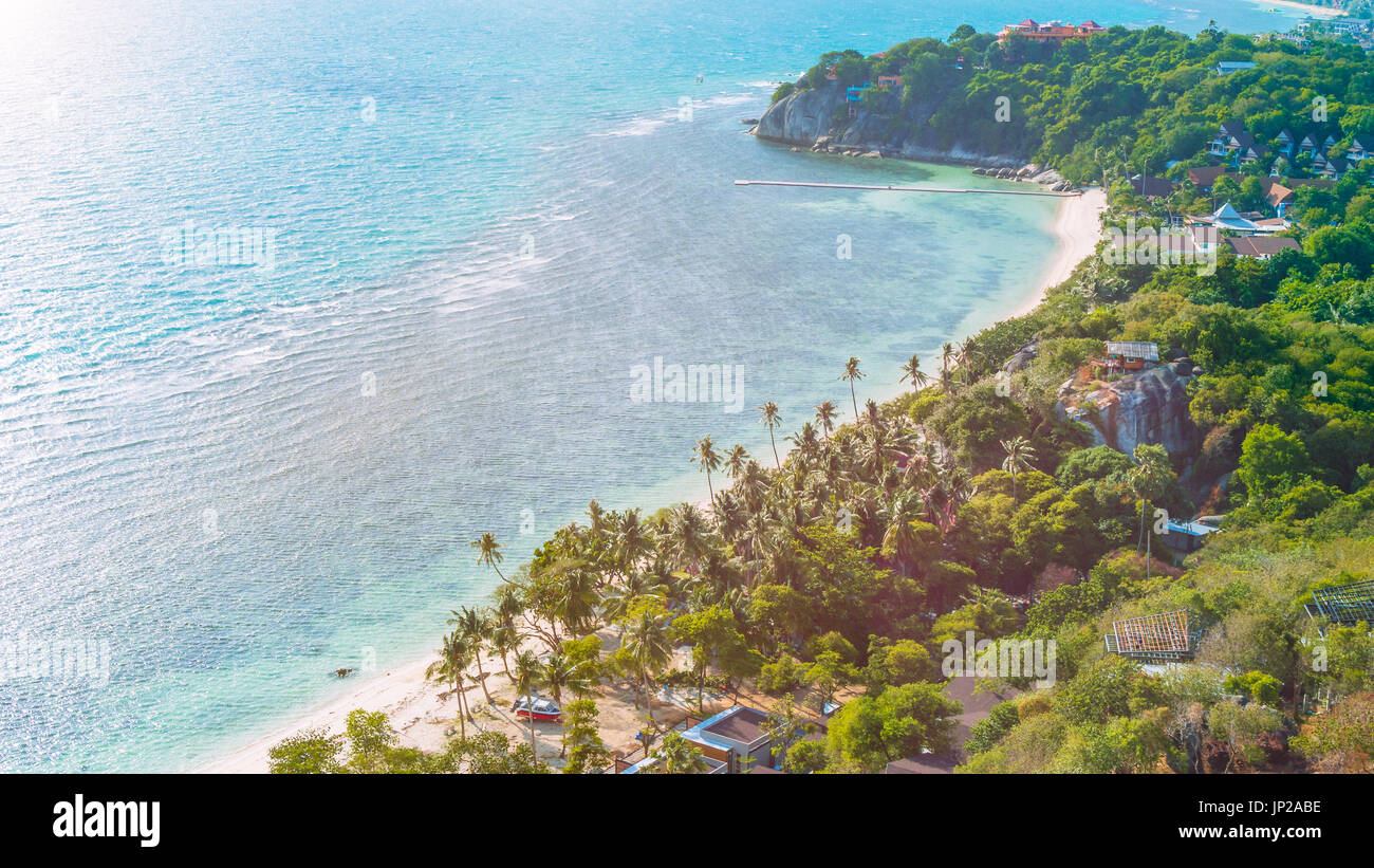 Tropical beach with palms on a windy day - Stock Image