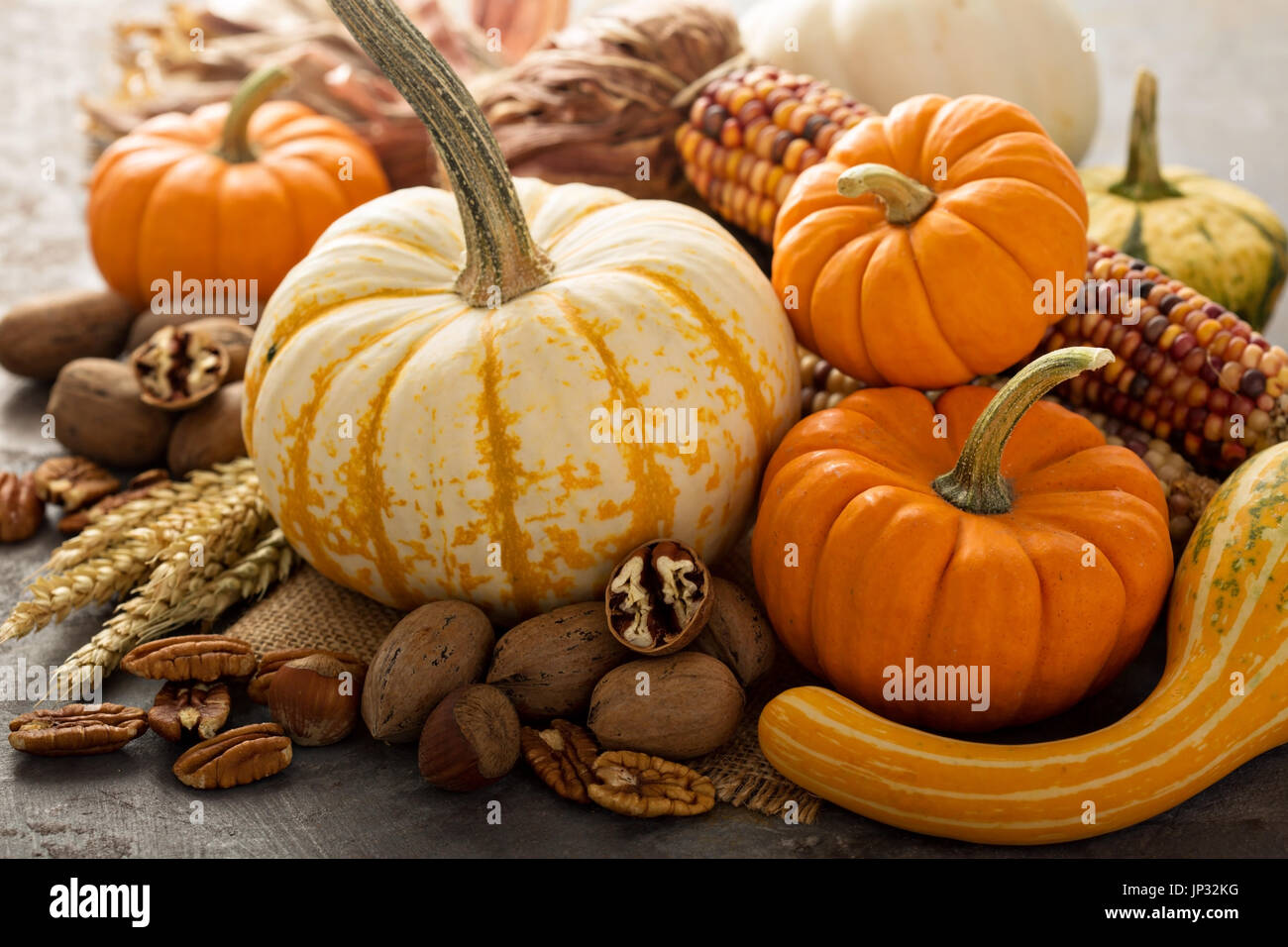 Fall still life with pumpkins, nuts, wheat and corn - Stock Image
