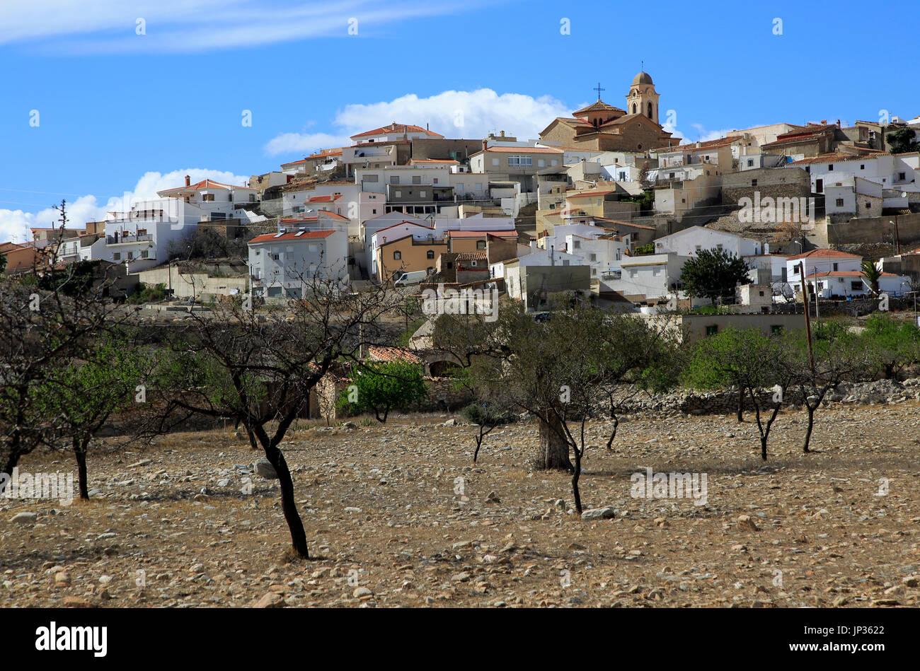 Fruit trees growing in farmland, village of Uleila del Campo, Almeria, Spain - Stock Image