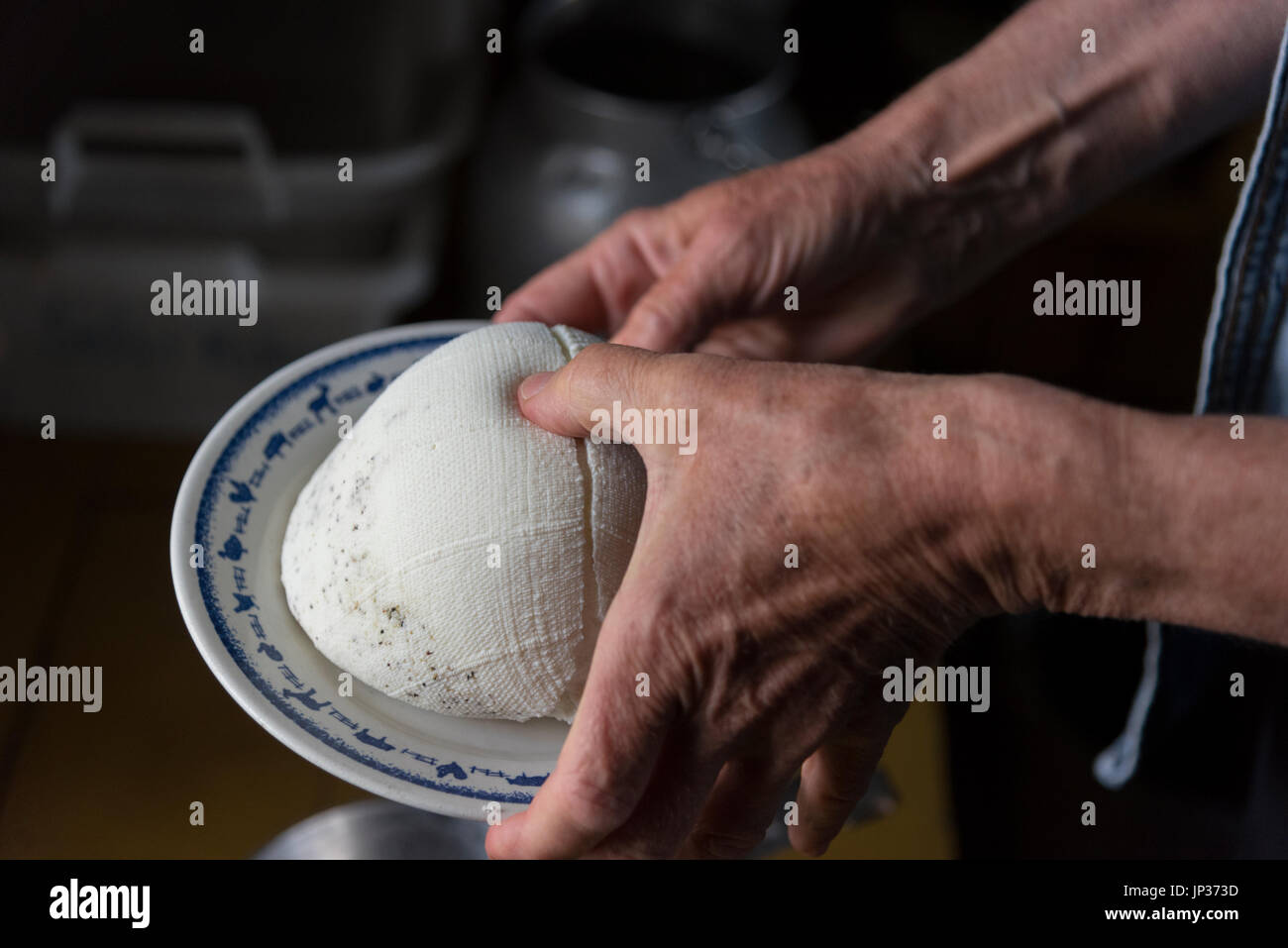 Making goat cheese at a mountain farm. This cheese is made from two days worth of goat milk from one goat. The cheese is still soft. - Stock Image