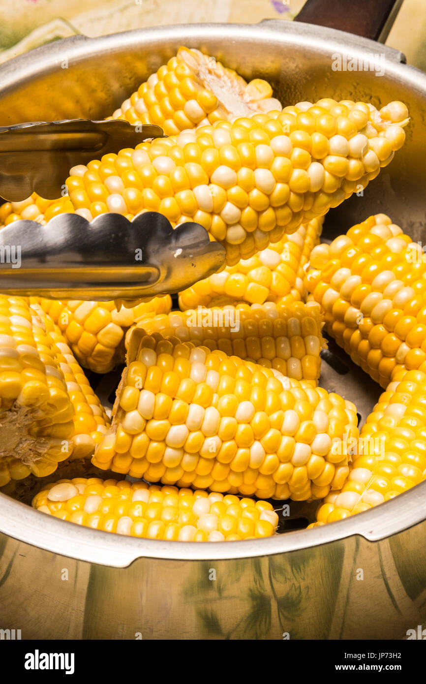 corn on the cob in pressure cooker - Stock Image