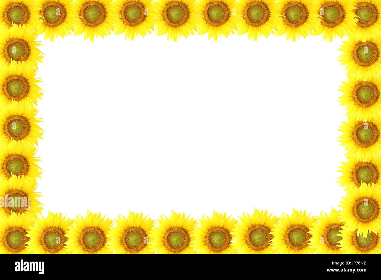 Frame Sunflower On Wood Background
