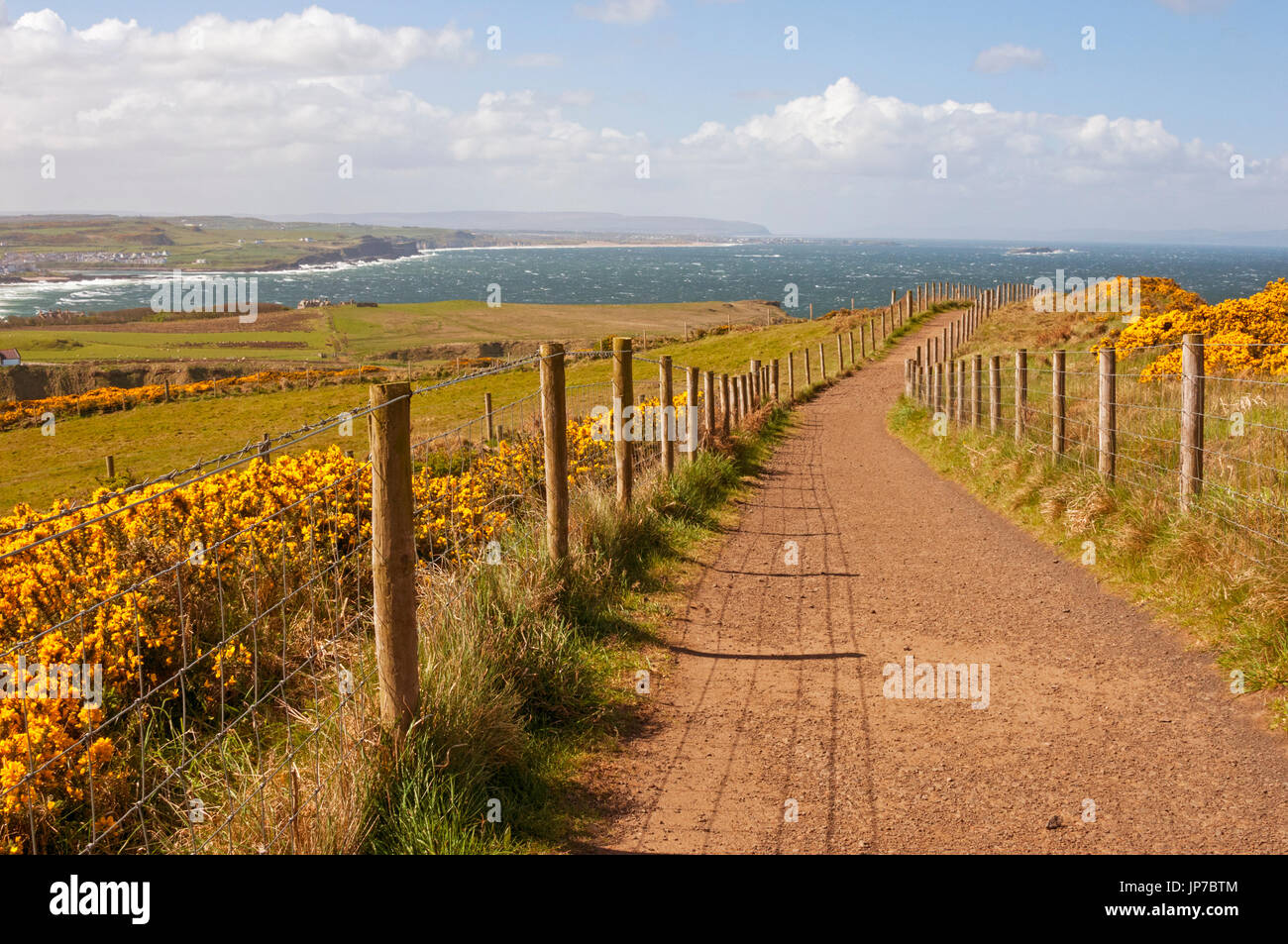 Trail above Giant's Causeway, Northern Ireland - Stock Image
