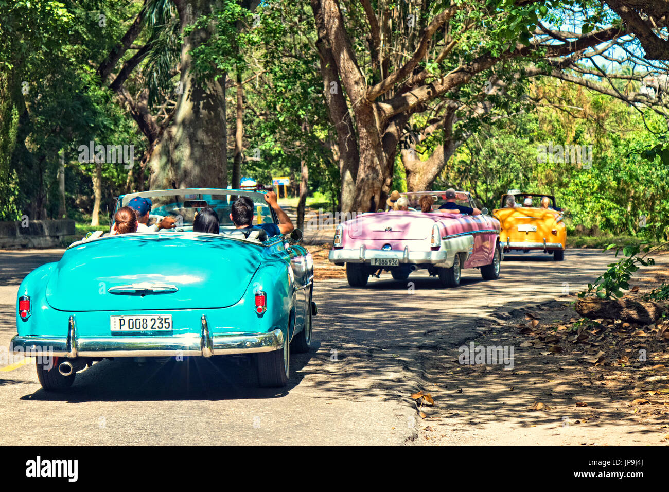 Classic cars drive through a forested area in Havana, Cuba. - Stock Image