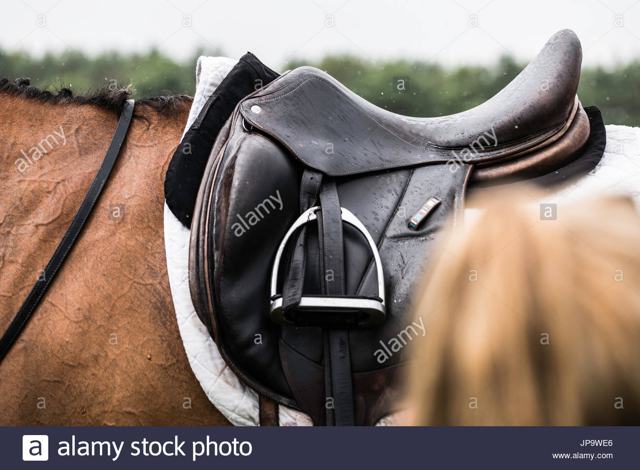 Burgham, Morpeth, Northumberland, UK. 28/29th July 2017. Eventers compete at Burgham International Horse Trials in the disciplines of Dressage, Showju - Stock Image