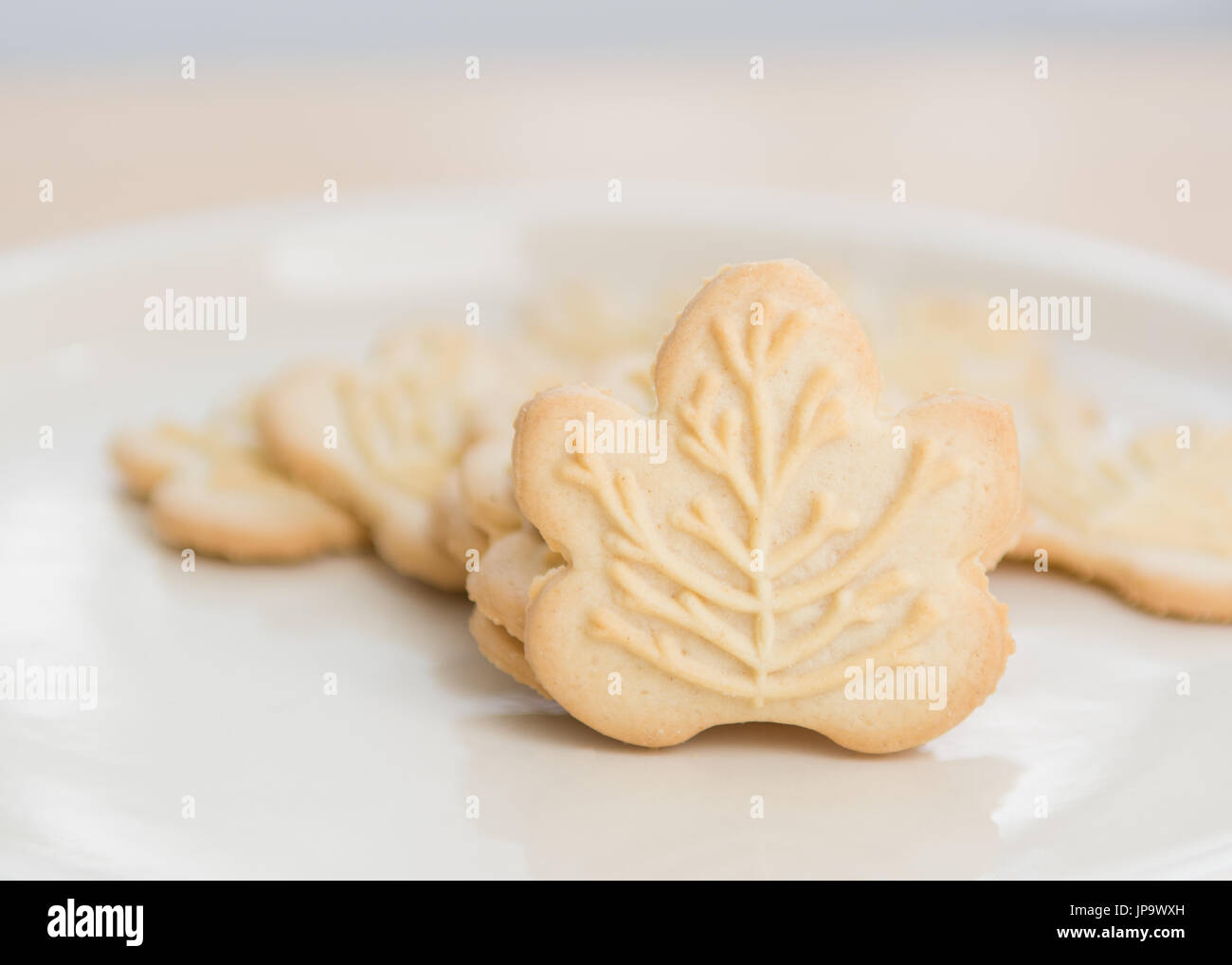 maple biscuits cookies by LB Maple Treat - Stock Image