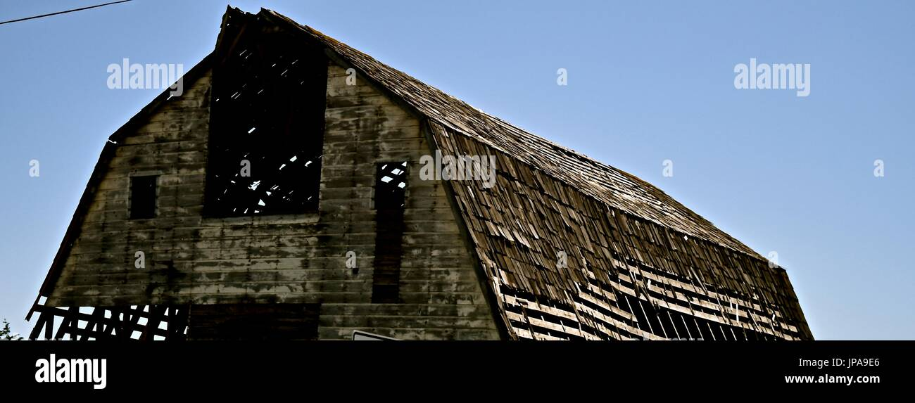 In the back roads of Washington state, you will find barns in different conditions, this was in the state of dilapidation. - Stock Image