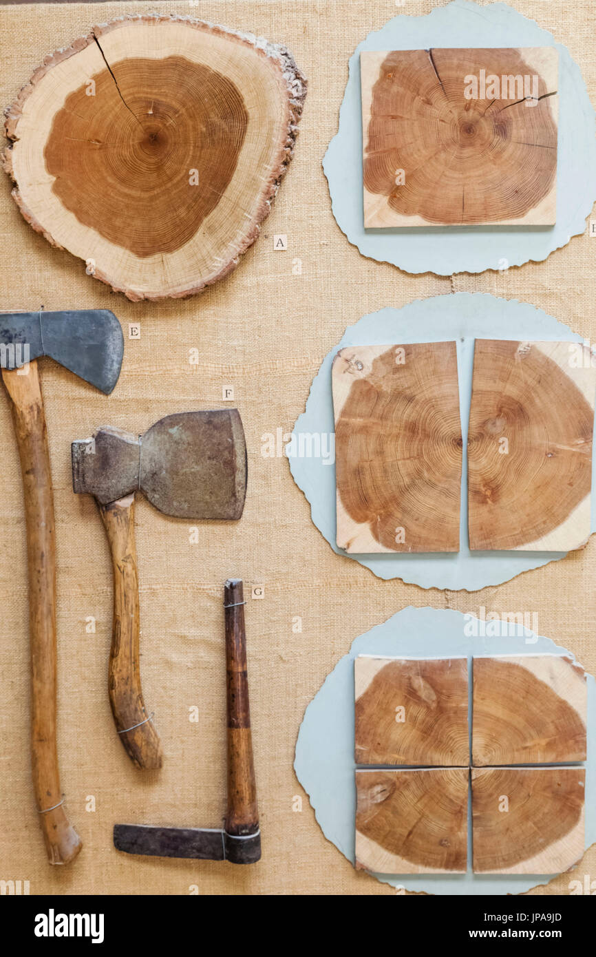 England, West Sussex, Singleton, Weald and Downland Open Air Museum, Display of Historical Woodcutters Tools - Stock Image