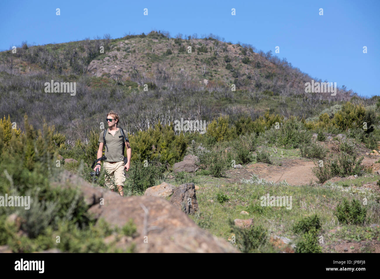 Hiker on the trail 16, La Gomera. In the background you can see the damage of conflagration in 2012 - Stock Image