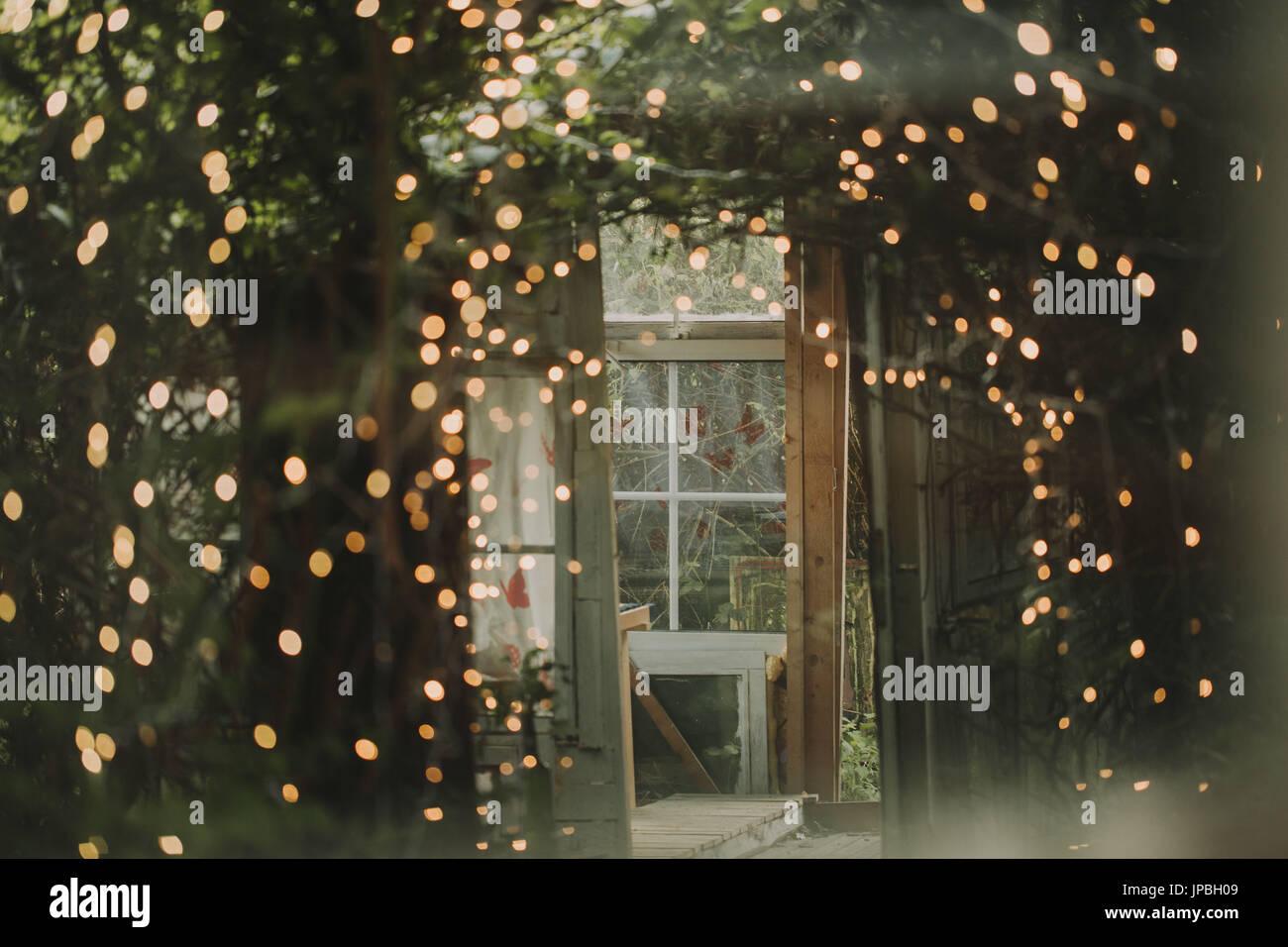 Alternative wedding, garden shed, strings of lights - Stock Image