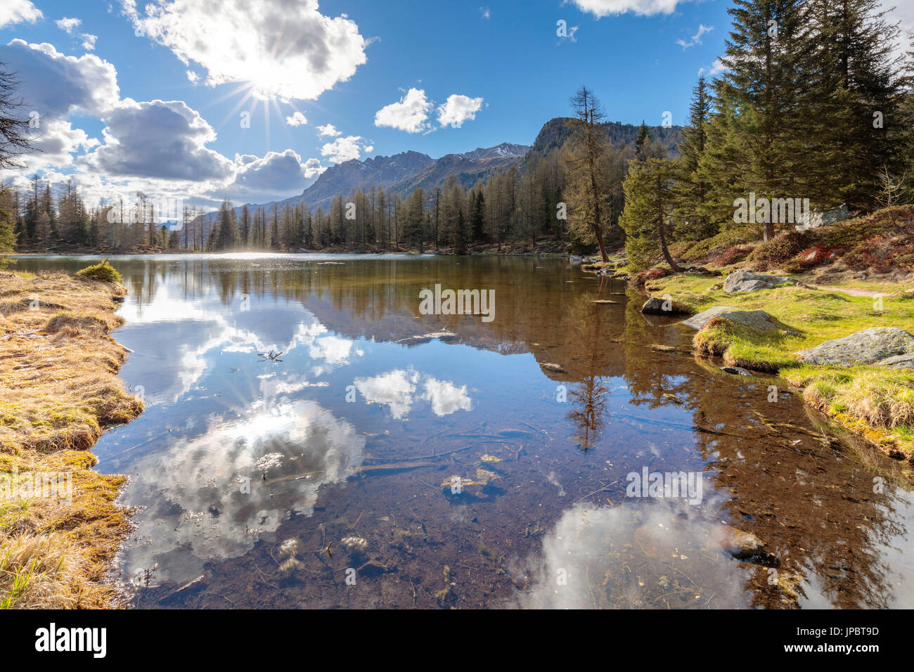 Europe, Italy, Trentino Alto Adige, Moena, Dolomites, the  alpine lake of San Pellegrino surrounded by a forest Stock Photo