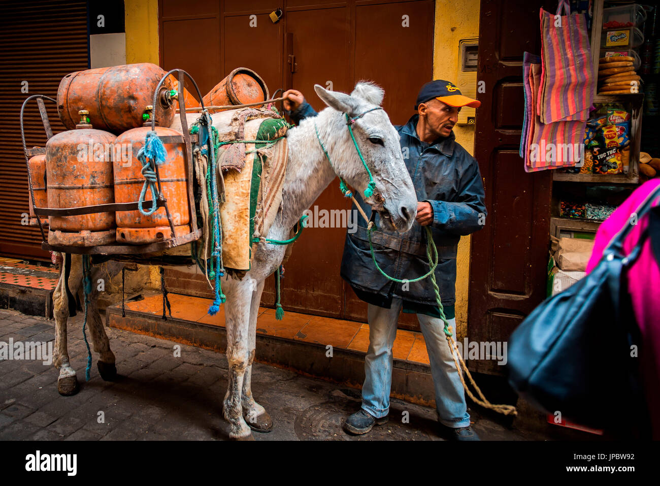 Fes, Morocco, North Africa. Donkey is the typical way of transport used in the Medina. - Stock Image