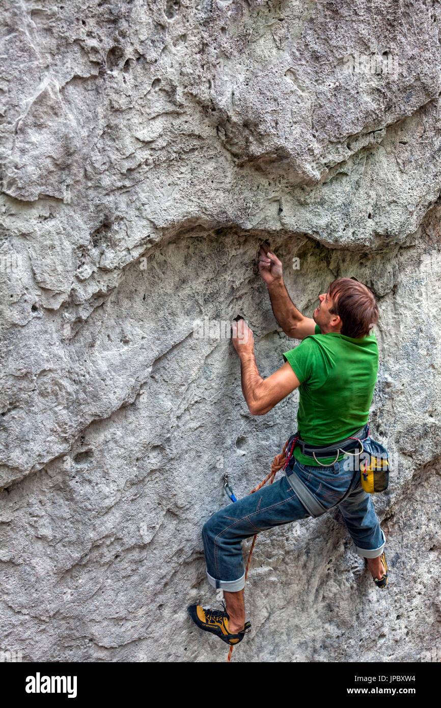 Free climbing, rock climbing in natural cliff. Climber in action on a rock path equipped. Gares, Dolomites, Veneto, Italy - Stock Image